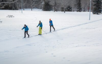 Cross country skiers in Edmonton's river valley.